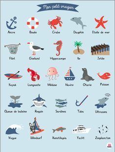 Items similar to Deco poster marine imagier baby room on Etsy French Alphabet, French Flashcards, Bath And Beyond Coupon, All Poster, Baby Room Decor, Illustrations, English Language, Artwork, Animals