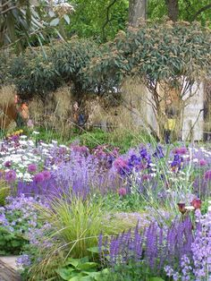 fantasy planting by Tom Stuart Smith, CFS 2004