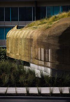 Extensive Dachberünung Von Outdoor-design | Extensive ... Intensive Extensive Dachbegrunung Nachhaltig
