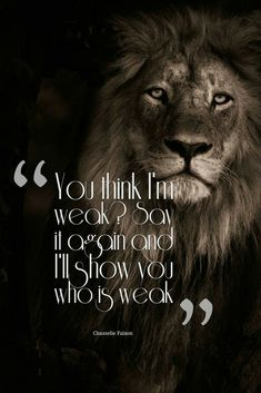 Leo Quotes, Wolf Quotes, Motivational Quotes For Life, Animal Quotes, Meaningful Quotes, Attitude Quotes, Wisdom Quotes, True Quotes, Positive Quotes