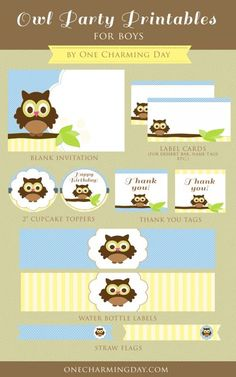 FREE Owl Party Printables for Boy Parties Set includes a blank invitation card, blank labels, cupcake toppers, thank you tags for favors, water bottle labels and straw flags.