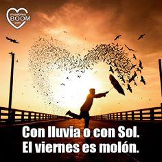 """""""Con lluvia o son Sol, el viernes es molón"""" #frases #buenosdias #viernes"""