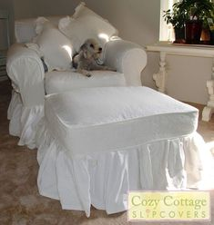 """Let me introduce you to my customer's adorable puppy, """"Lola"""". Lola loves her new slipcover with flowing ruffles. Lola's owner loves the sh. Cottage Shabby Chic, Romantic Shabby Chic, Cozy Cottage, Shabby Chic Decor, Shabby Chic Sofa, Custom Slipcovers, Furniture Slipcovers, Slipcovers For Chairs, Shabby Chic Romantique"""