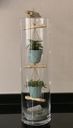"""Tall glass vase with rope ladder and mini plants - living acce .-Hohe Glasvase mit """"Strickleiter"""" und Minipflanzen – Wohnaccessoires Tall glass vase with """"rope ladder"""" and mini plants - Indoor Garden, Indoor Plants, Mini Plantas, Terrariums Diy, Tall Glass Vases, Deco Nature, House Plants Decor, Deco Floral, Interior Plants"""