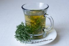The thyme herb tea benefits have been known for ages. Drinking this magical tea may provide relief for many ailments. Make the switch from coffee! Thyme Tea Benefits, Thyme Herb, Types Of Tea, Natural Detox, Natural Healing, Healing Herbs, Medicinal Plants, Tea Recipes