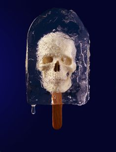 This skulksicle lollipop was created by artists at Hamilton Ice Sculptures for London food photographer David Sykes' skull lollies project. Looks cool, no? Steam Punk, Crane, Popsicle Art, Ice Sculptures, After Life, Skull And Bones, Memento Mori, Still Life Photography, Skull Art