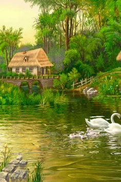 Hermosos paisajes en movimiento