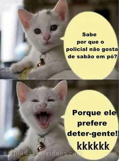 Memes Estúpidos, Comedy Memes, Life Memes, Cat Memes, Good Jokes, Funny Jokes, Otaku Meme, E 10, Funny Cute