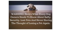 WARNING_ Here's What Every Dog Owners Needs To Know About Safty & Security: www.buywooftag.com Losing A Pet, Dog Owners, Pets, Animals, Animaux, Animal, Animales, Animais