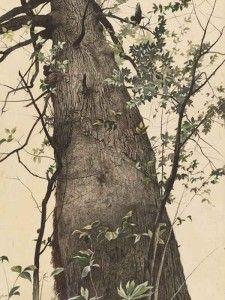 Andrew Wyeth. El roble, 1944. National Gallery of Art, donación de Edward Hyde Cox