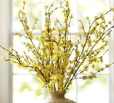 Faux Forsythia Branch | Pottery Barn. for new floor vase?