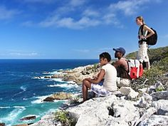View our list of guided hiking operator in the Overberg, South Africa - Dirty Boots Hiking Trips, Mountain Trails, Whale Watching, Day Hike, Nice View, The Great Outdoors, South Africa, Walking, Activities