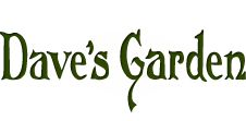 This is a great gardening site to follow by email.  I get lots of information from this newsletter.