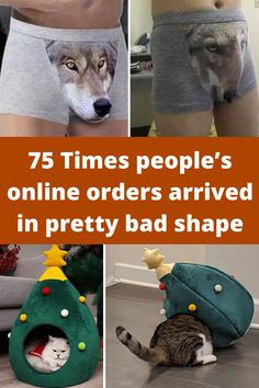 75 Times people's online orders arrived in pretty bad shape People Online, Hilarious, Shapes, Entertaining, Style Inspiration, Times, Amazing, Pretty, Stitches