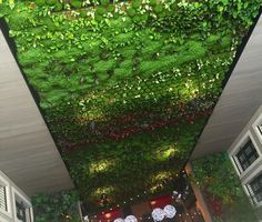 Living wall of beautiful colour! #love #green #livingwall #plantwall #architecture #gardendesign #modernishdesigns