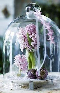 Cloches | Gypsy Purple home......
