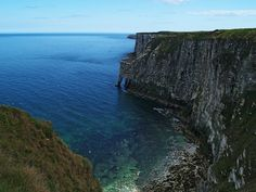 Bempton Cliffs in the East Riding of Yorkshire. photo by WatscapePhoto