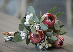 Wedding flowers native australian protea bouquet 68 ideas for 2019 Protea Wedding, Flower Bouquet Wedding, Floral Wedding, Flower Bouquets, Protea Bouquet, Bridesmaid Flowers, Bride Bouquets, Bridal Flowers, Party