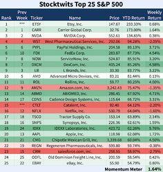 Investing: Top 25 S&P 500