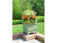 Garden | Deborah Silver and Co.