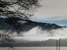 Lake Whatcom Trail. Bellingham Area. Roundtrip 6.2 miles, Elevation Gain 100 ft, Highest Point 100 ft. (Good Year Round Hike)