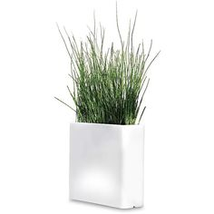 Vaso Rettangolare Illuminated Planter ($575) ❤ liked on Polyvore featuring home, outdoors, outdoor decor, plants, accessories and цветы