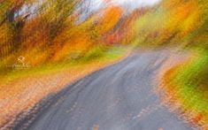 Belle Photo, Illustrators, Country Roads, Images, Photography, Students, Artistic Photography, Veneers Teeth, Photograph