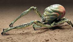 Monster Gallery: Evolution (2001) | Monster Legacy Alien Creatures, Fantasy Creatures, Strange Creatures, Mythical Creatures, Monster Design, Monster Art, Creature Feature, Creature Design, Science Fiction