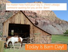 No matter how hard your day is.... there's always someone waiting for you at the Barn! HAPPY BARN DAY !!