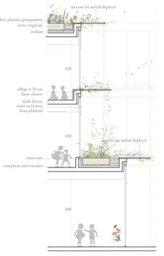 Wall Section + Planters Detail Architecture, Plans Architecture, Architecture Graphics, Architecture Student, Architecture Drawings, Architecture Portfolio, Interior Architecture, Landscape Architecture, Green Facade