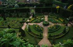 Box circle with topiary and irises seen from the top window of the Abbeey House, Wiltshire, England