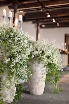 Green Wedding, Floral Wedding, Wedding Flowers, Gypsophila Wedding, Tiny White Flowers, Deco Floral, Ceremony Decorations, Container Plants, Garden Landscaping