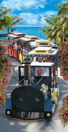 Key West Conch Tour Train- Hop on the Key West Express in the morning and be in Key West before lunch! Departs from Ft. Myers Beach & Marco Island.