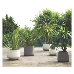 DIGBY White textured planter 24 x 34cm