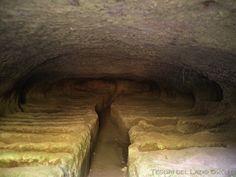 Viterbo (Viterbo) - Necropoli di Castel d Asso - Interno della Tomba Orioli - Photo G. Garofoli (10-2007) - © All rights reserved - Tesori del Lazio