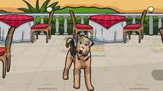 A Charming Airedale Terrier Pet Dog With A Restaurant Patio Overlooking The Ocean Background:  A dog with curly brownish beige and black fur droopy ears and beard tilts its head to the left in wonderment and A patio with a blue sea view beige sand green plants five round tables wrapped in white and red cloth brown chairs with red cushion