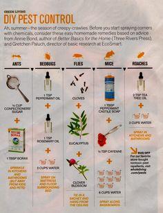 Natural DIY Pest Control