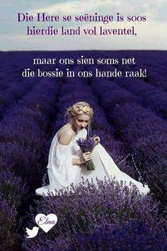 Jesus Our Savior, Mother Teresa, Afrikaans, Christianity, Religion, Encouragement, Bible, Inspirational Quotes, Wisdom