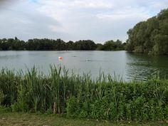 Summer Swimming | therunawayeducationalist