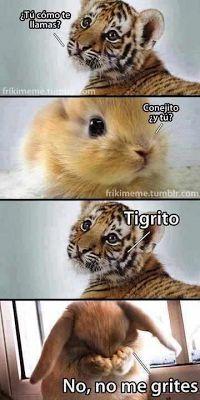 Frases, chistes, anécdotas, reflexiones, Amor y mucho más.: Chiste del conejo y el tigre, los nombres de los animalitos.
