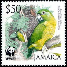 Flora - Fauna on stamps: Black-billed Amazon of Jamaica