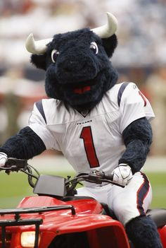 Houston Texans mascot