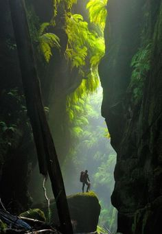 Australia Travel Inspiration - One of the most beautiful slot canyons in the world - Claustral Canyon in Australia.