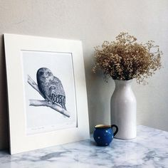 Peter Tugwell-Drawing artist #sketch #sketching #draw #drawing #pencil  #galleryart #arte #illustration #artwork #artist #art #fineart #traditionalart #creative #creativity #progress Led Pencils, Pencil And Paper, Cockatoo, Creative People, Objects, Sketches, Display, Shapes, Fine Art