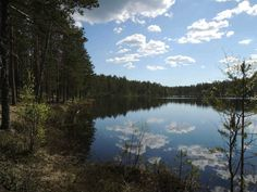Oulujärvi in #Rokua #Finland
