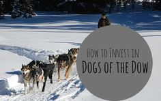 Investing in Dogs of Dow