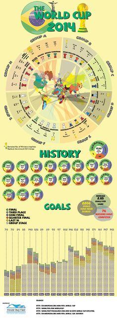 2014 FIFA World Cup Brazil infograph