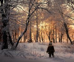 Elena Shumilova's magical, wintry photography: Boy walking through snowy forest