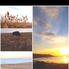 Great salt lake. Utah. Beauty.