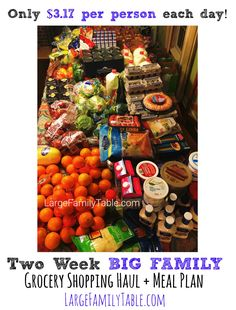 Two Week BIG FAMILY of 9+ Grocery Shopping Haul & Meal Plan (Only $3.17 per person per day!)